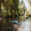Salmon Creek Riverside Retreat