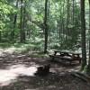 Everglades Campsite 1