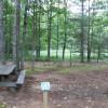 Everglades Campsite 3