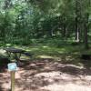 Everglades Campsite 5