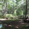 Everglades Campsite 6