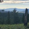 Beautiful Ridge Top Meadow