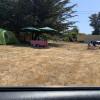 Mendocino Coast Sand Dunes