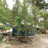 Lawson Adventure Yurt - Grey's