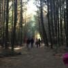 Divine Mercy RV Retreat Camp