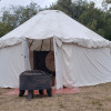 A Yurt and Horse Experience