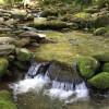 Beautiful Creek Side RV Site