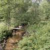 Secluded Wildlife Paradise