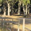Buffalo Creek Tenting @Newell Lodge