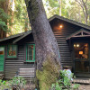 The Redwood Getaway Cabin