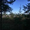Lakeside Rustic Camping