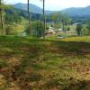 Walnut Hollow Woodland Experience