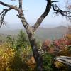 Eagle Rock Mountain Bike / Climb