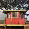 Rainbow Jaguar Treehouse