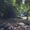 Paradise Camping Coffee Farm