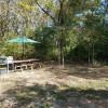 Camp Hedge Apple
