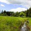 Hidden Springs Wilderness Camping