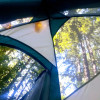 Tiny Camp in Giant Trees