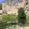 Wilde River Homestead