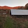 Vintage Camper at Sunny Truth Farm
