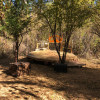 Plum Grotto Tent Platform