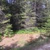 Camp Kootenai Site 1