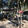 Shiny Rock Ranch/ Site 2
