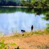 Lake Hartwell Campground
