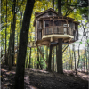Treehouses and Cabins