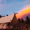 Black Tree Resort - Luxury Camping