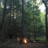 Camp streamside in a hemlock forest