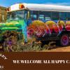"""1972 Vintage School Bus """"Franny"""""""