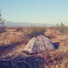 Black Butte Basin Camping