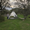 Ohana Campsite #5 with tent setup