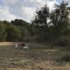 Campsite #1 Ohana Country