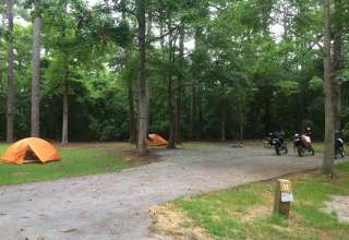 Campsite 11 at Cedar Point Campground