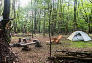 camping in the woods. Modren The Sanctuary In The Woods NY 13 Hipcamper Reviews  And 51 Photos And Camping In The Woods Hipcamp