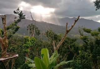 Backpackers Paradise El Yunque