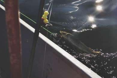 Fishing allowed on Goose Lake