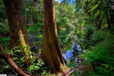 Hillsborough River Campground