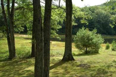 Penn-Roosevelt Park Campground