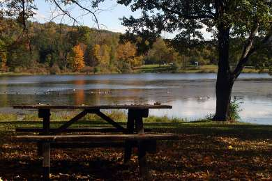 Lackawanna Park Campground
