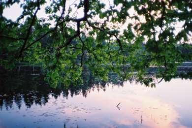 Lower Lake Campground