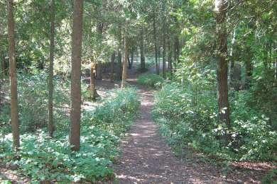 Harrisville Campground