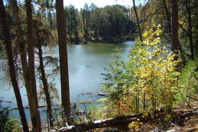 Bear Head Lake Campground