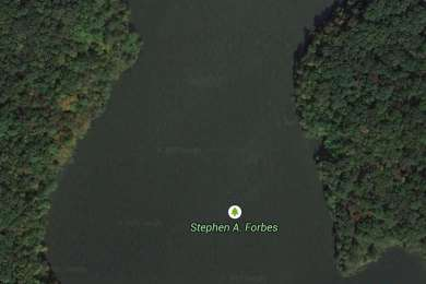 Stephen A. Forbes Campground