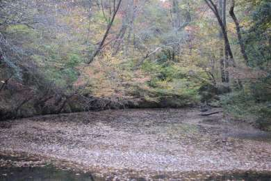 Medoc Mountain Campground