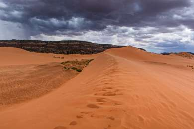 Coral Pink Sand Dunes Campground