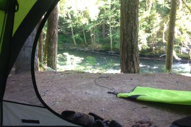 Ohanapecosh campground has amazing campsites! Surrounded by giant trees, with campsites right along a beautiful creek. Sounds of the creek blocked out all noise. Nice short hike nearby