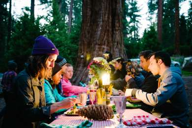 Dinner party in the woods